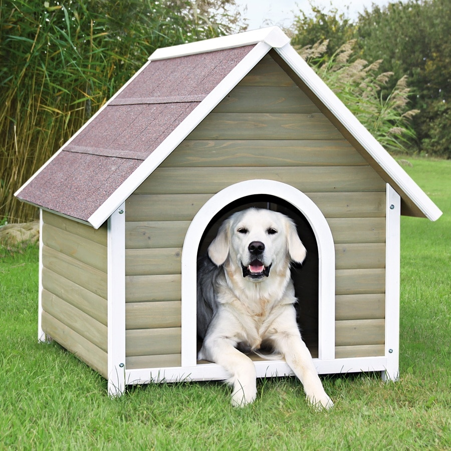 Shop trixie pet products 3104 ft x 2937 ft x 3458 ft for Dog houses sold at lowes