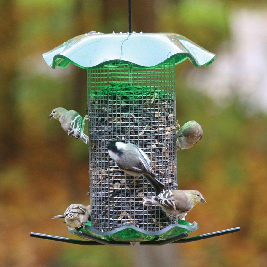Birds Choice Steel Tube Bird Feeder