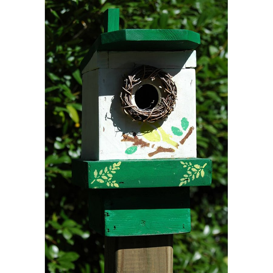 Wilderness Series Products 9-in W x 10-in H x 7-in D Green/White Bird House