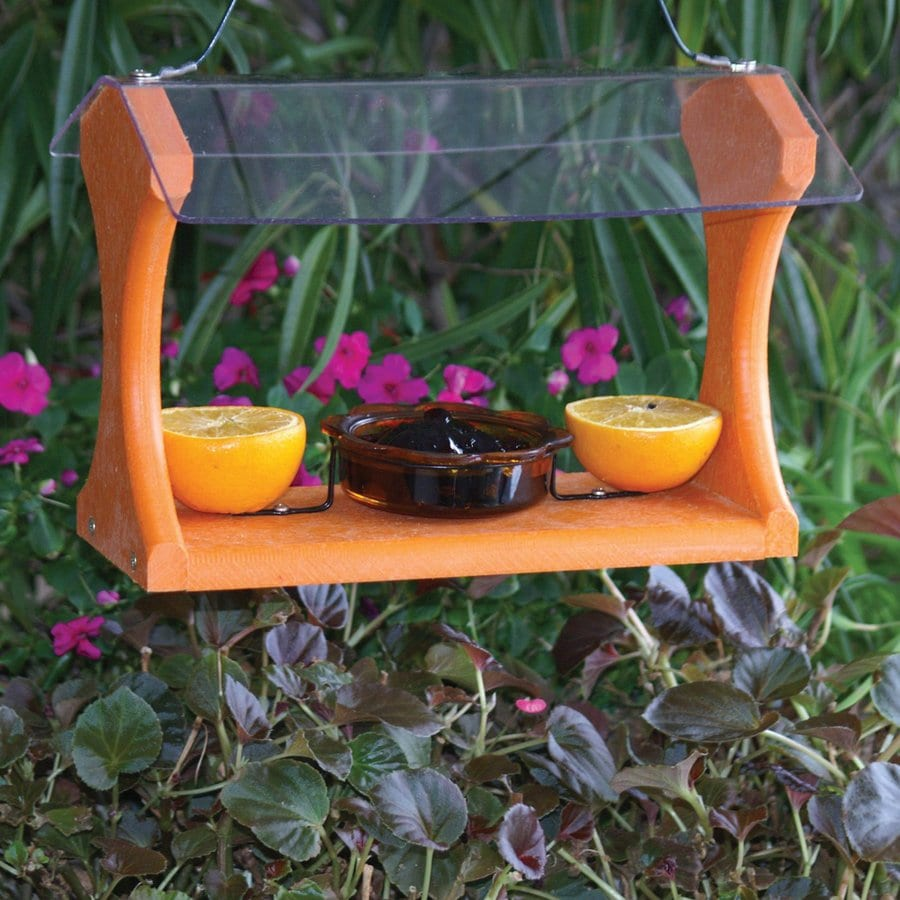 WoodLink Going Green Plastic Oriole Feeder