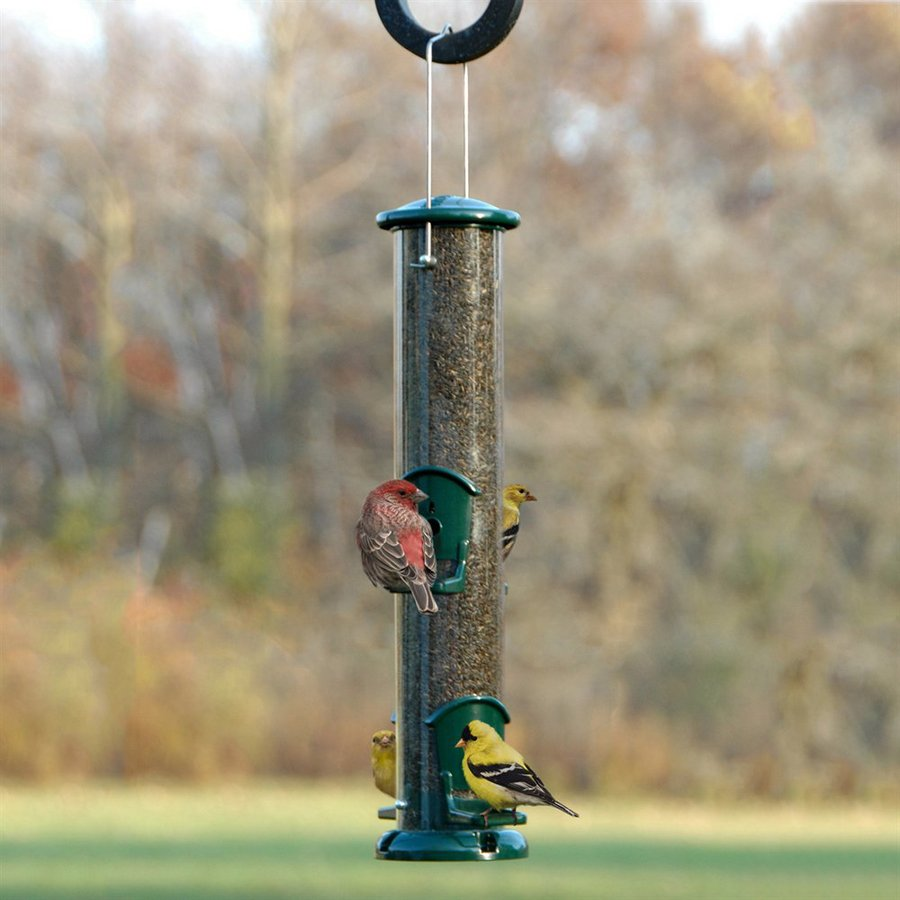 WoodLink Metal Tube Bird Feeder