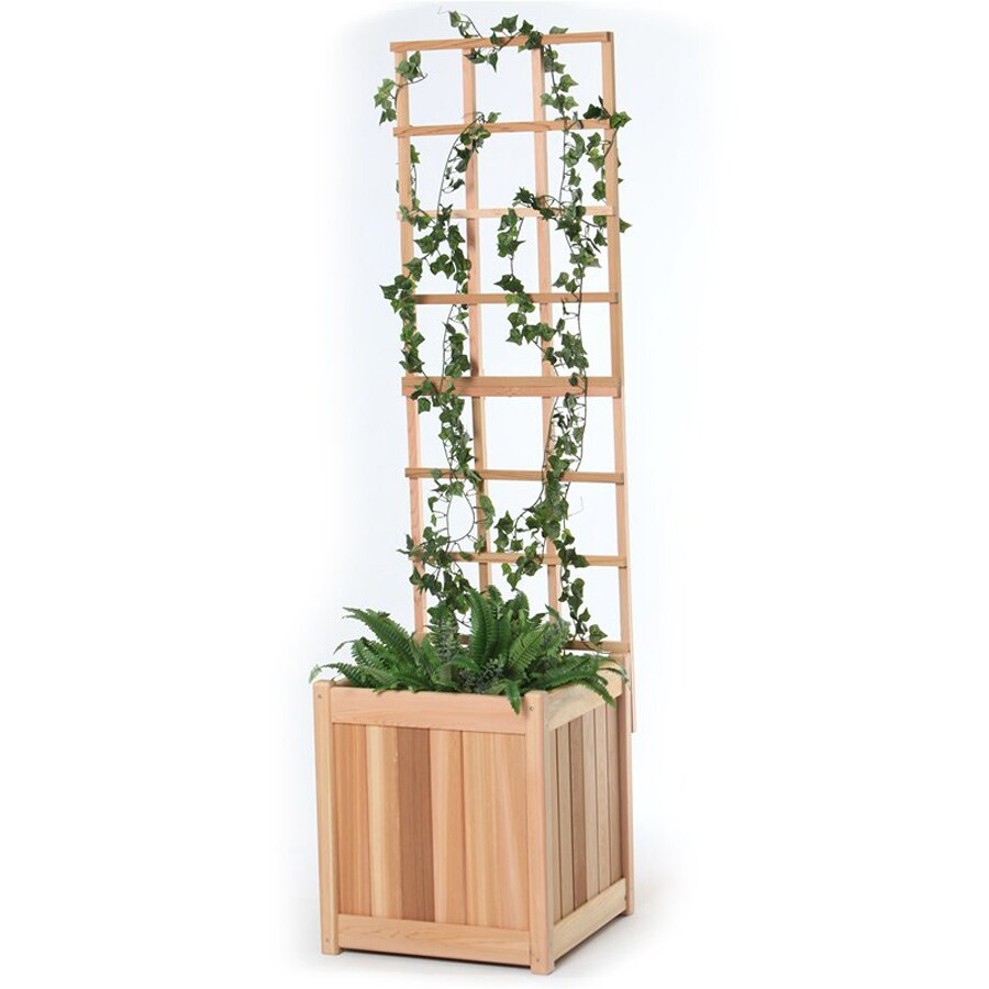 All Things Cedar 18-in W x 60-in H Natural Utilitarian Garden Trellis