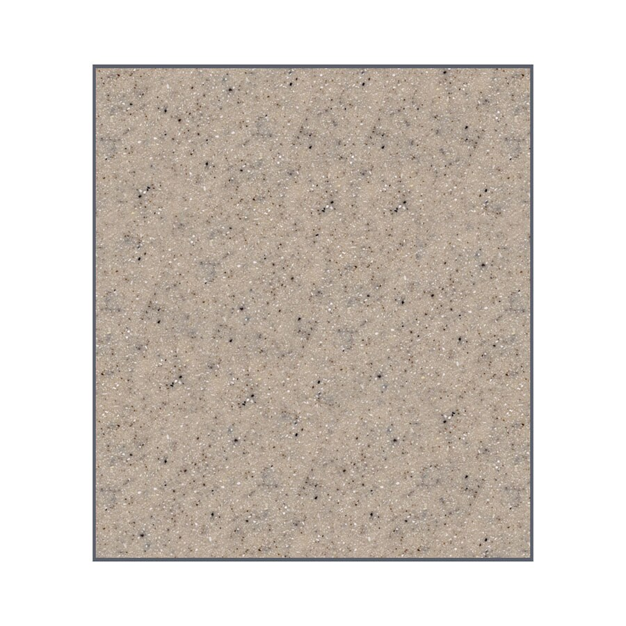 Transolid Decor Desert Earth Shower Wall Surround Side Panel (Common: 0.25-in; Actual: 60-in x 0.25-in)