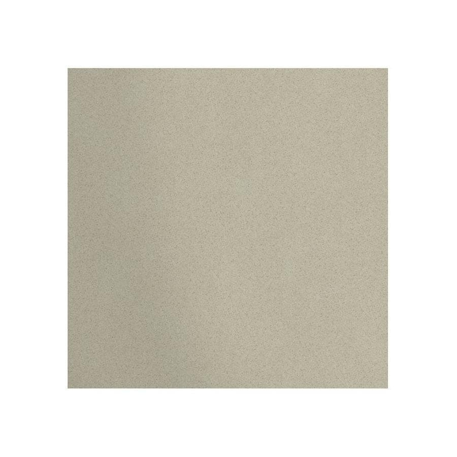 Transolid Decor Desert Earth Shower Wall Surround Back Panel (Common: 0.25-in; Actual: 60-in x 0.25-in)