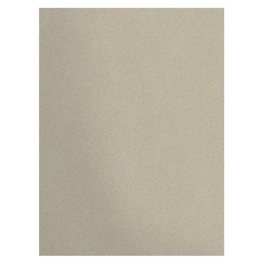 Transolid Decor Desert Earth Shower Wall Surround Back Panel (Common: 0.25-in; Actual: 96-in x 0.25-in)