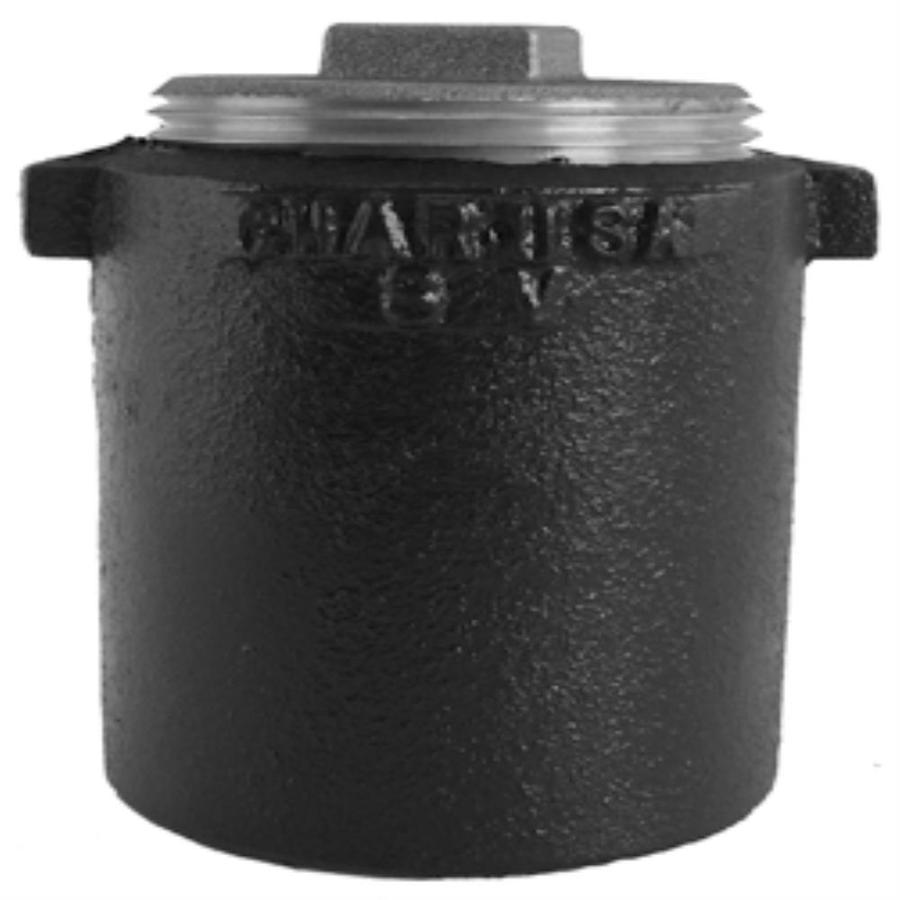 Charlotte Pipe 4-in dia Cleanout Cast Iron Fitting