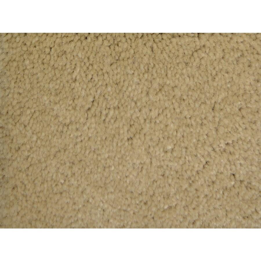 STAINMASTER PetProtect Purebred Secretary Textured Indoor Carpet