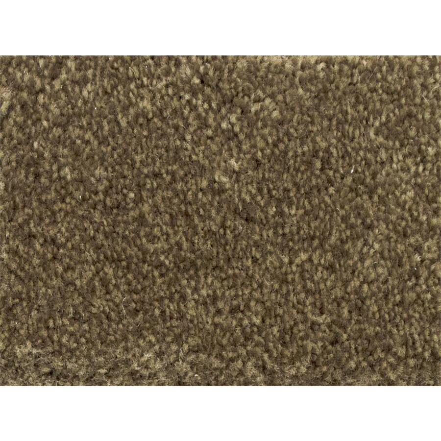 STAINMASTER PetProtect Purebred Gait Textured Indoor Carpet