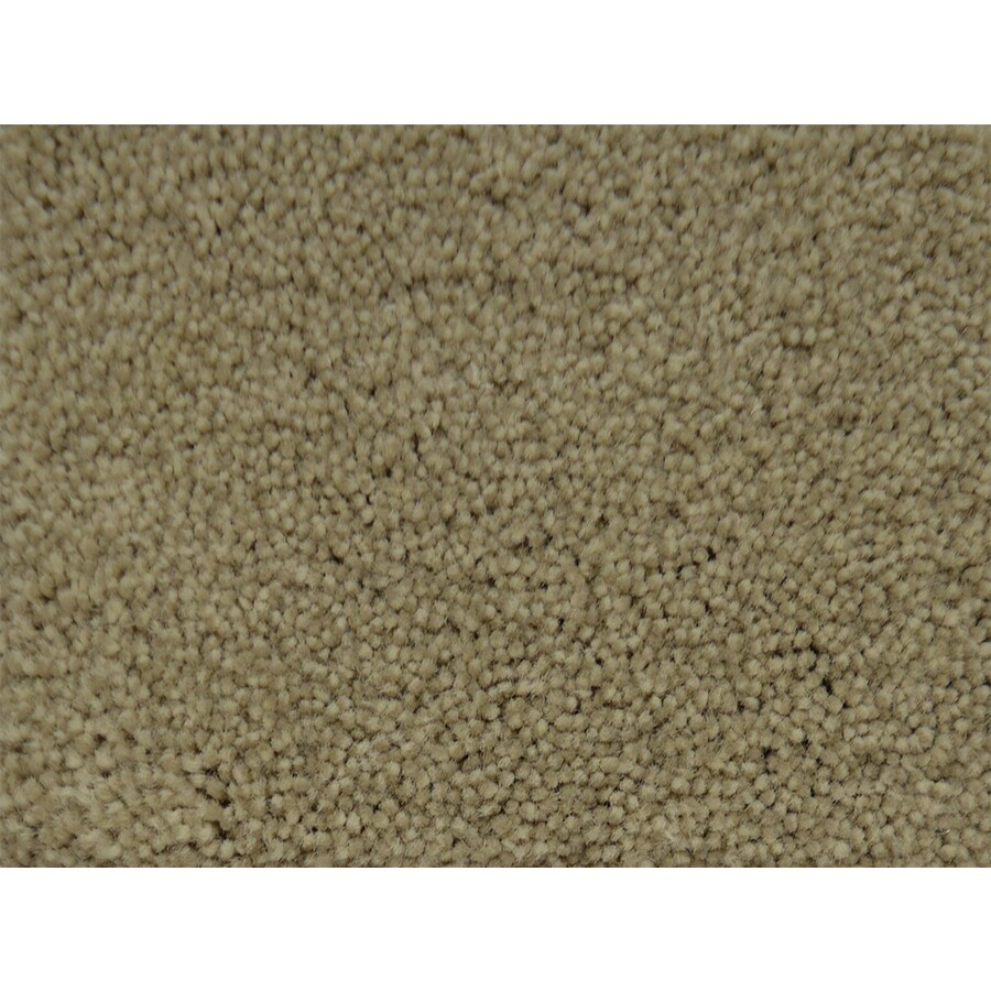 STAINMASTER PetProtect Pedigree Premium Textured Indoor Carpet