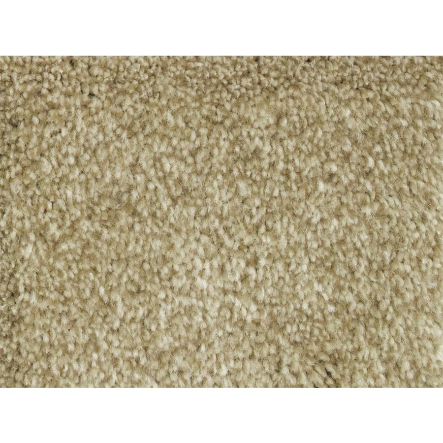 STAINMASTER PetProtect Pedigree Groom Textured Indoor Carpet