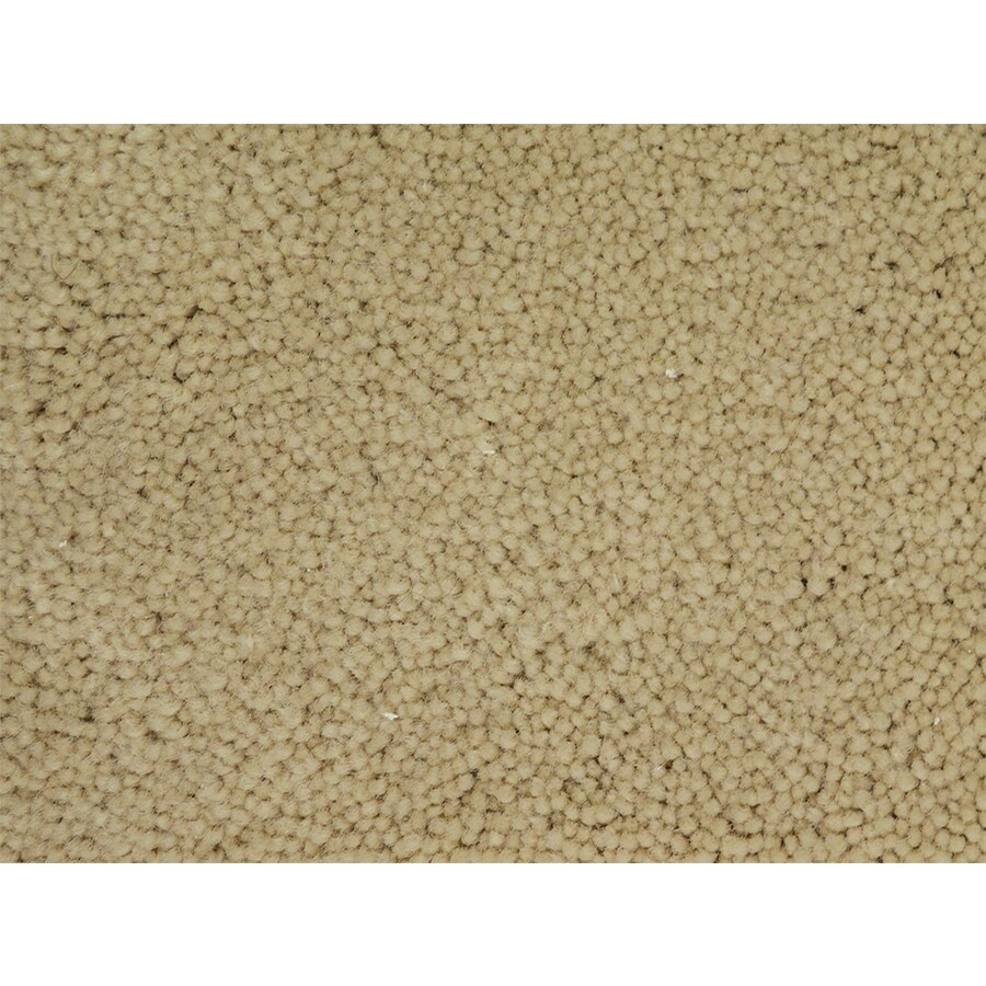 STAINMASTER PetProtect Pedigree National Textured Indoor Carpet