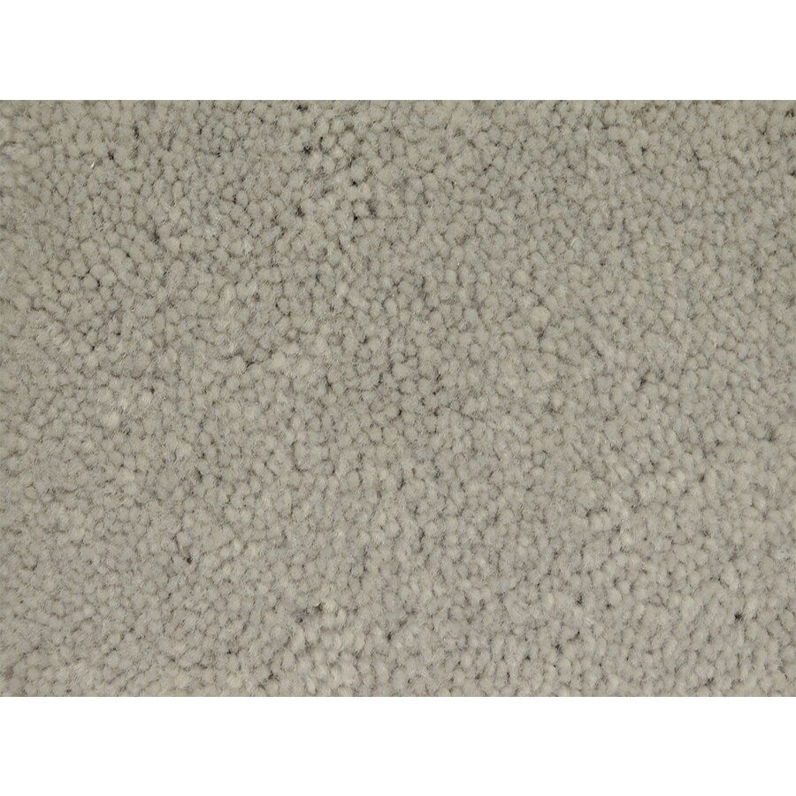 STAINMASTER PetProtect Pedigree Class Textured Indoor Carpet