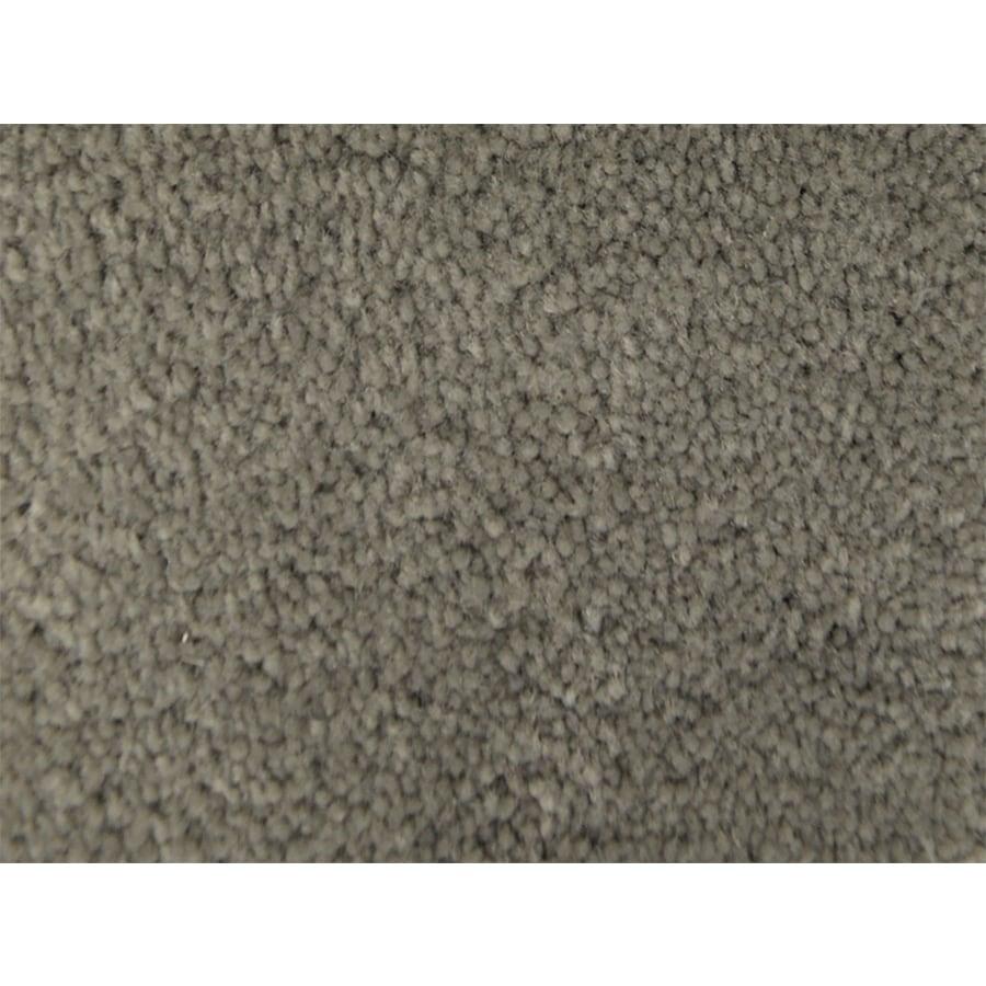 STAINMASTER PetProtect Pedigree Obedience Textured Indoor Carpet
