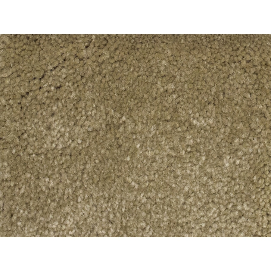 STAINMASTER PetProtect Best In Show Futurity Textured Indoor Carpet