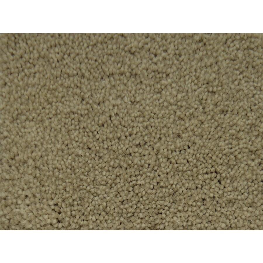 STAINMASTER PetProtect Best In Show Premium Textured Indoor Carpet