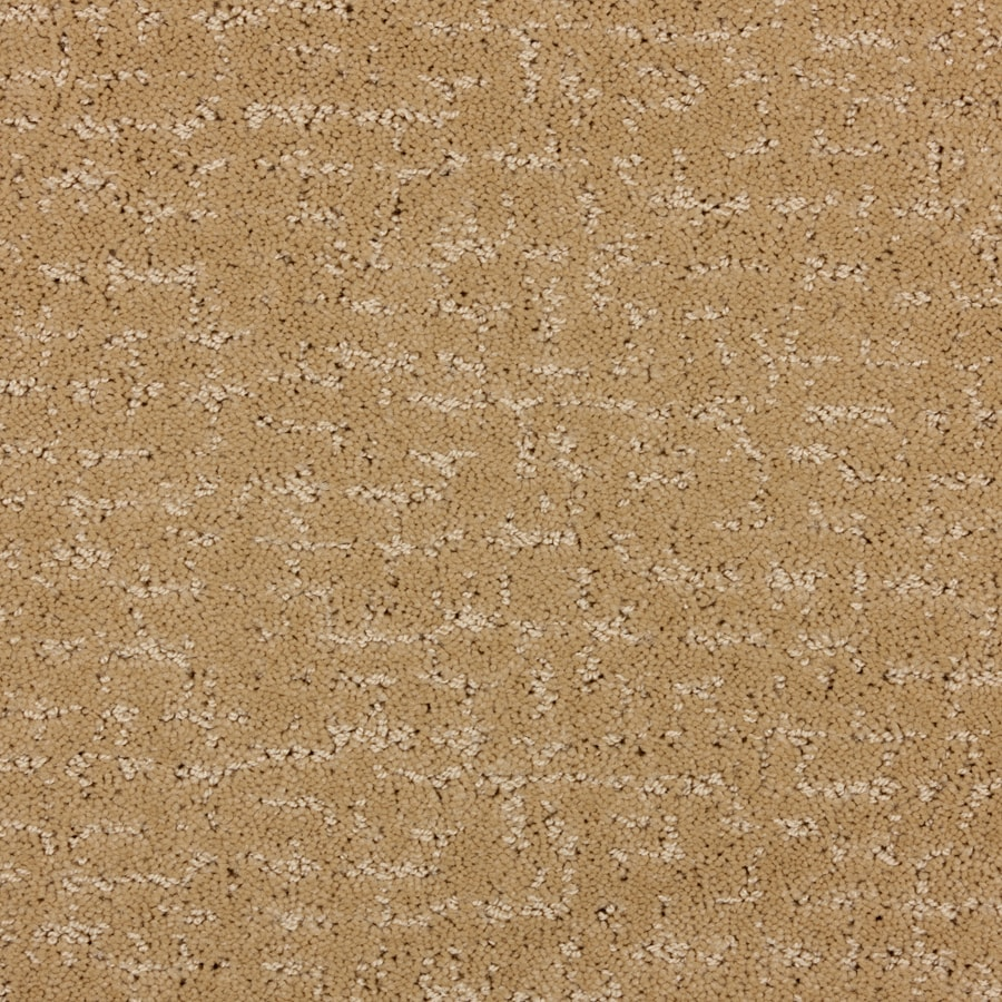 STAINMASTER PetProtect Treviso Maple Wood Cut and Loop Indoor Carpet