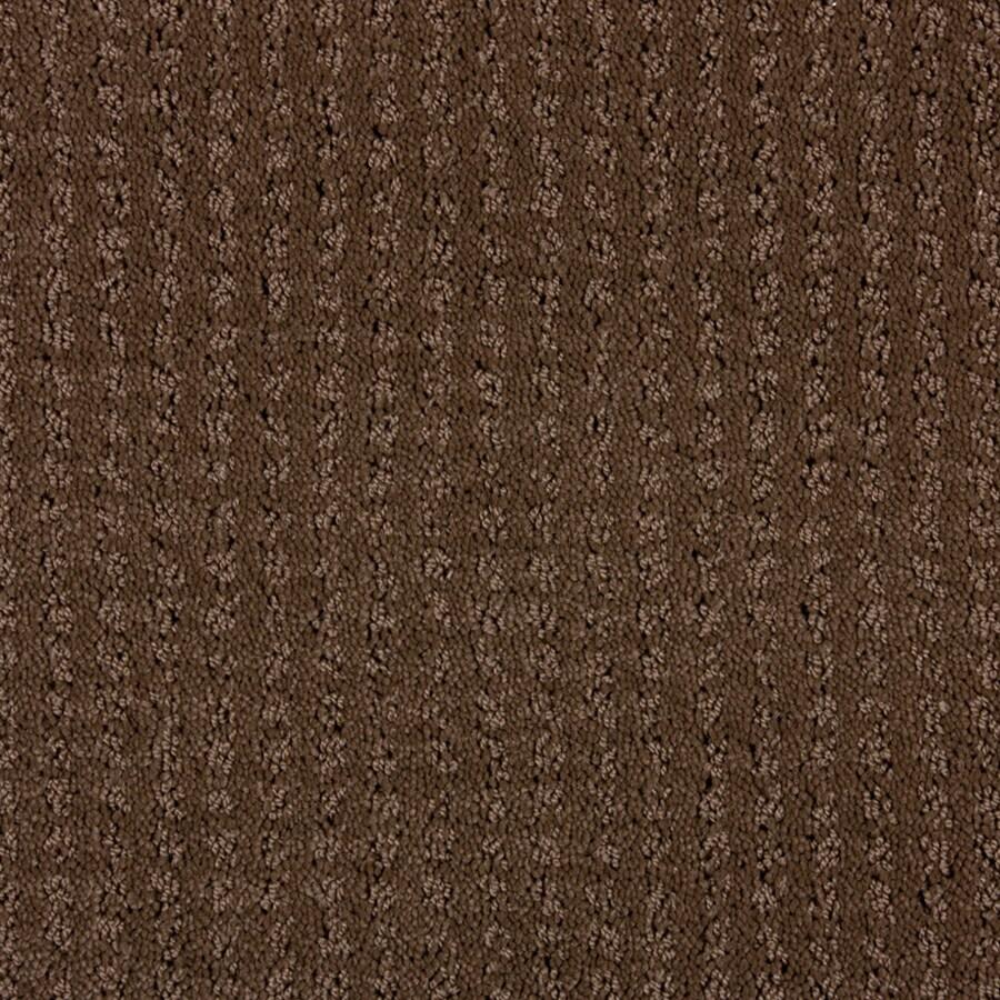 STAINMASTER PetProtect Sardi Docker Brown Cut and Loop Indoor Carpet
