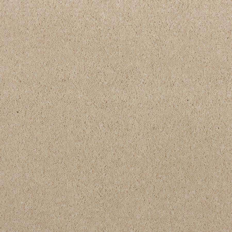 STAINMASTER PetProtect Wembley Gardenia Beach Saxony Indoor Carpet
