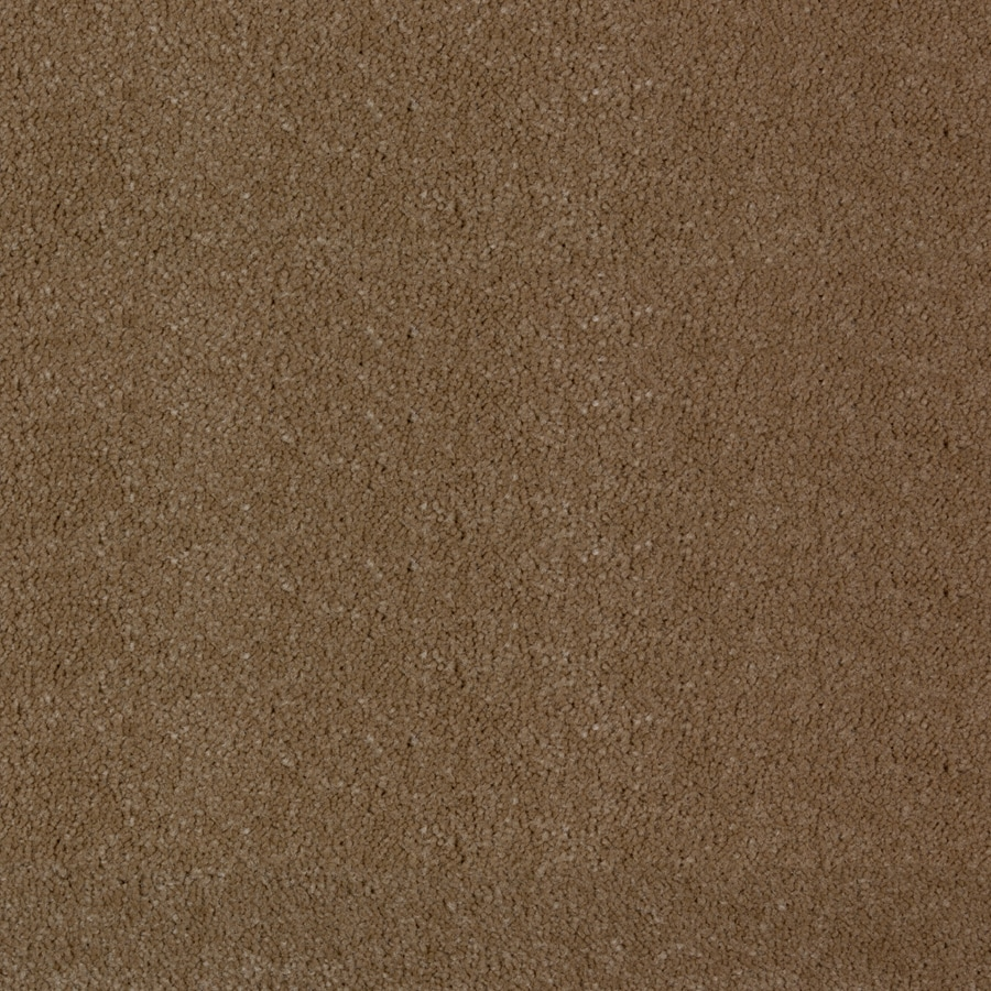 STAINMASTER PetProtect Wembley Cabriolet Brown Saxony Indoor Carpet