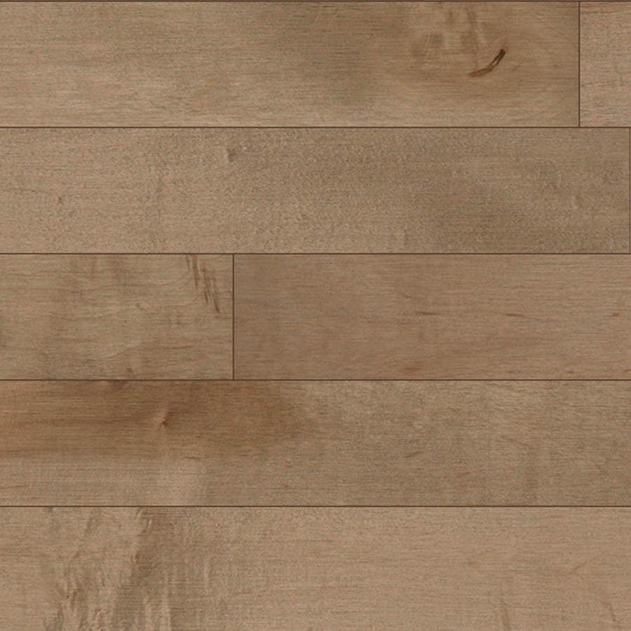 allen + roth Maple Hardwood Flooring Sample (Frosted Maple)