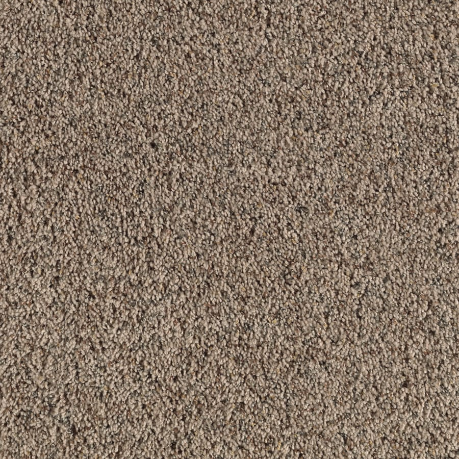 Shop feature buy summer taupe textured indoor carpet at for What is the best carpet to buy