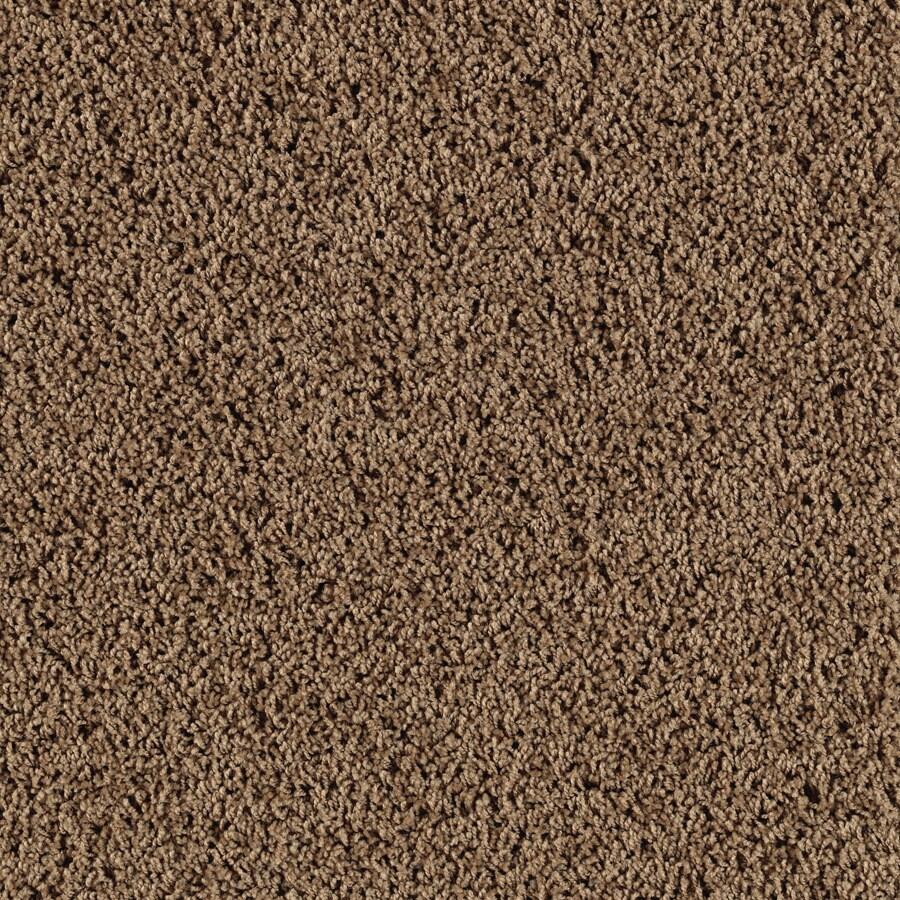 Shop SmartStrand Haywood Beach House Frieze Indoor Carpet
