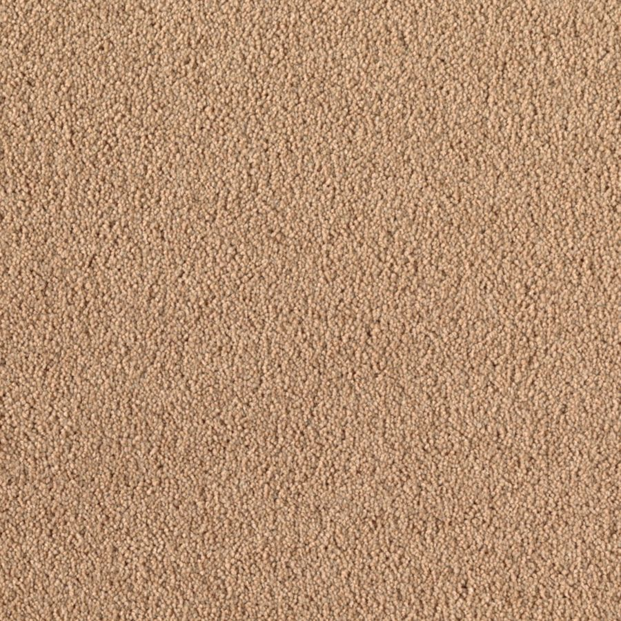 Mohawk Essentials Dream Big I Sun Tea Textured Indoor Carpet