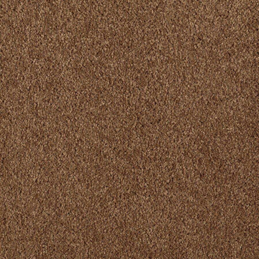 Mohawk Essentials Dream Big II Kodiak Textured Indoor Carpet