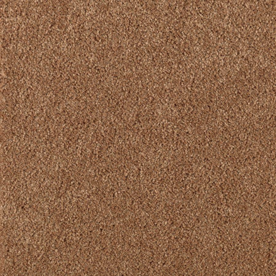 Mohawk Essentials Dream Big II Teriyaki Textured Indoor Carpet
