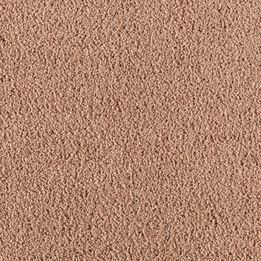 Mohawk Essentials Renewed Touch II Spice Age Textured Indoor Carpet