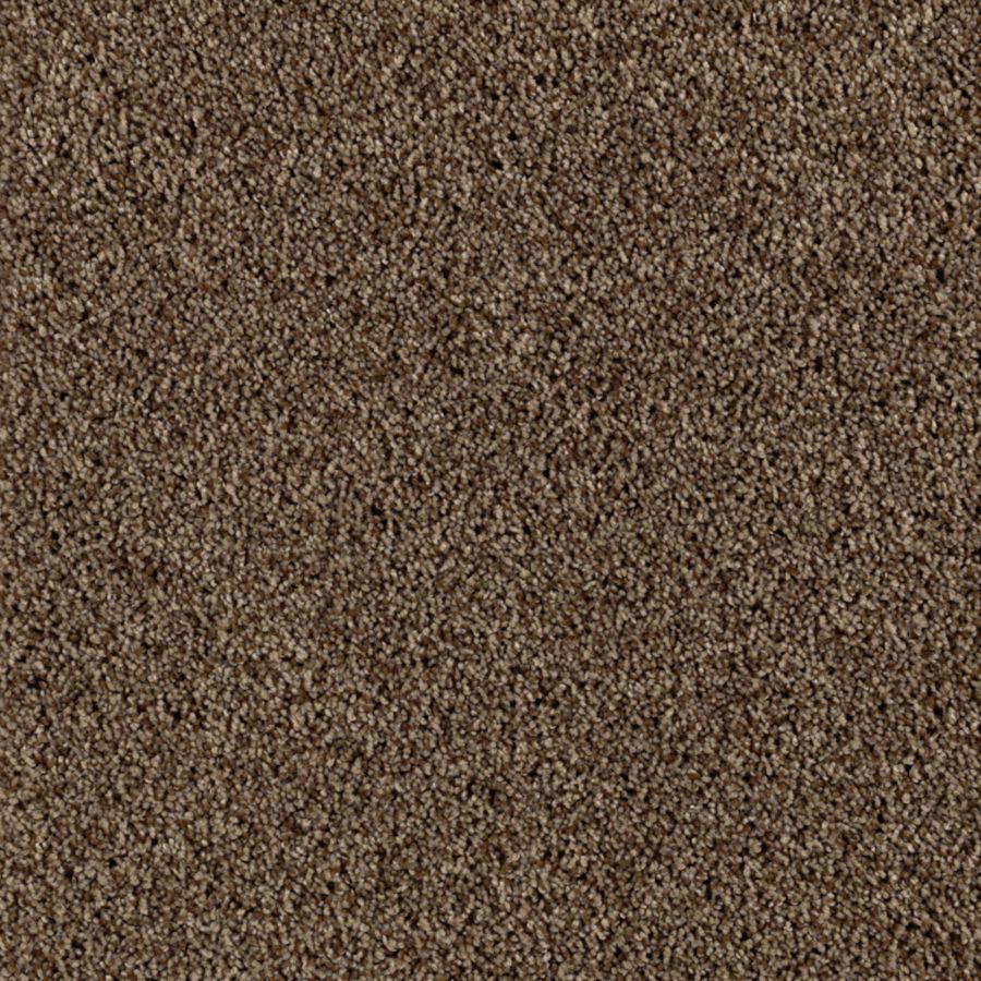Mohawk Essentials Beautiful Design I Leatherwood Textured Indoor Carpet
