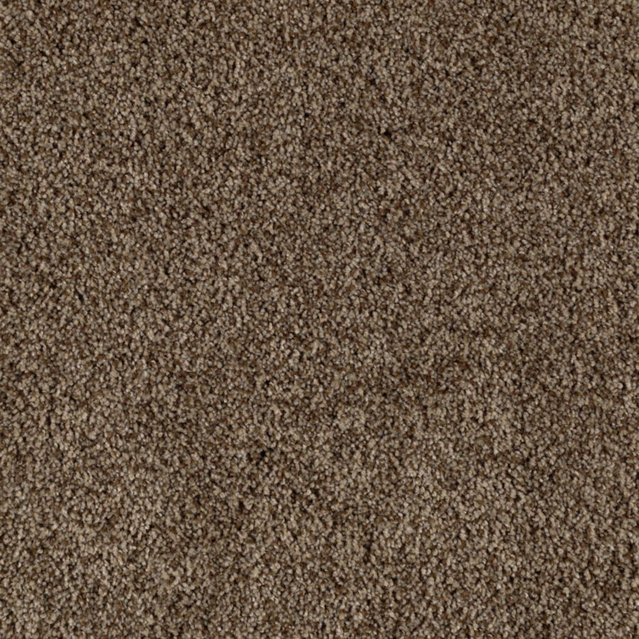 Mohawk Essentials Beautiful Design II Tundra Textured Indoor Carpet