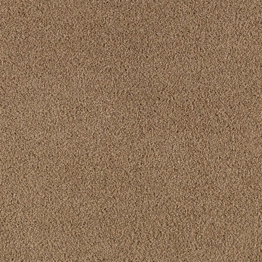 Mohawk Active Family Amber Cove Thatched Roof Textured Indoor Carpet
