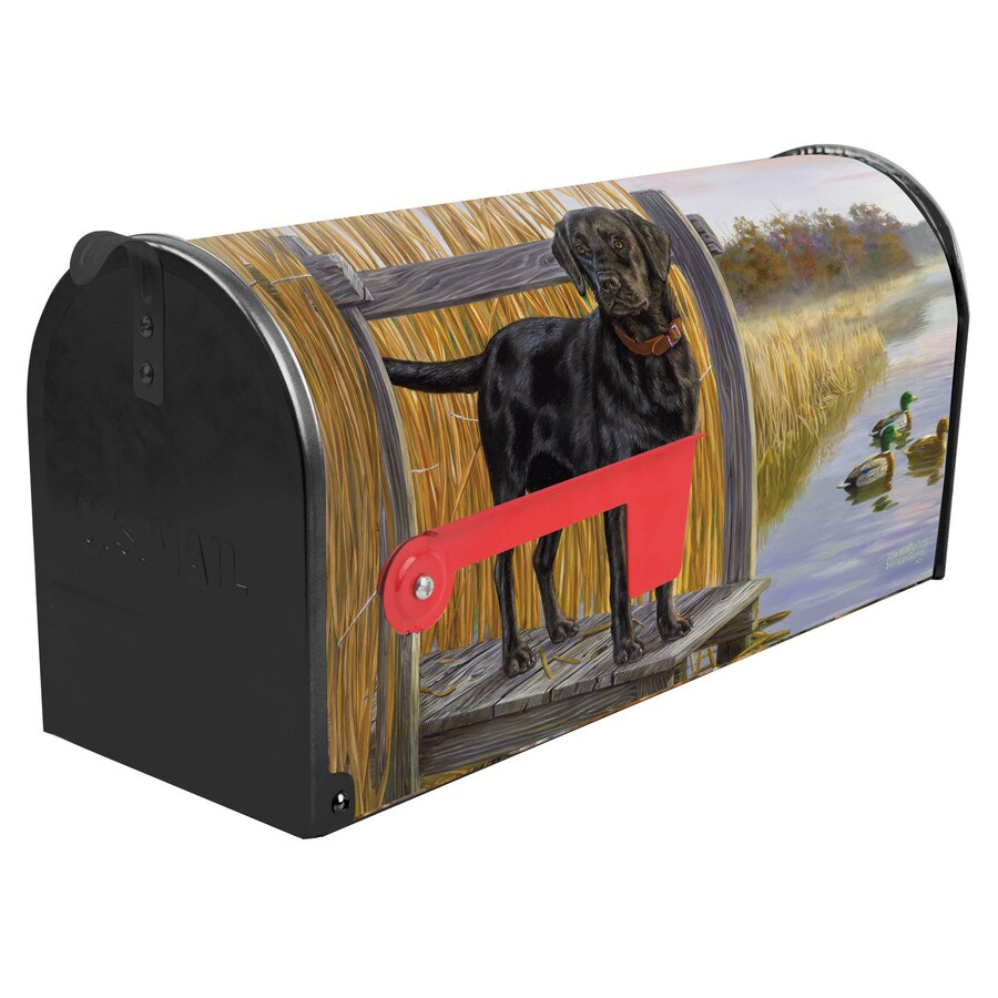 S.A.W. 7-in x 9-in Metal Duck Zone Post Mount Mailbox