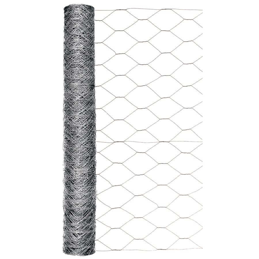 1 inch x 3 ft x 25ft Poultry Netting Galvanized Steel Wire Chicken Fence Durable