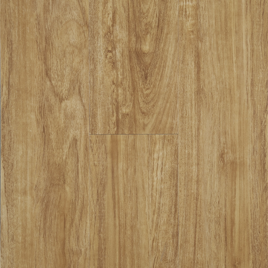 Stainmaster Vinyl Flooring Reviews Carpet Review