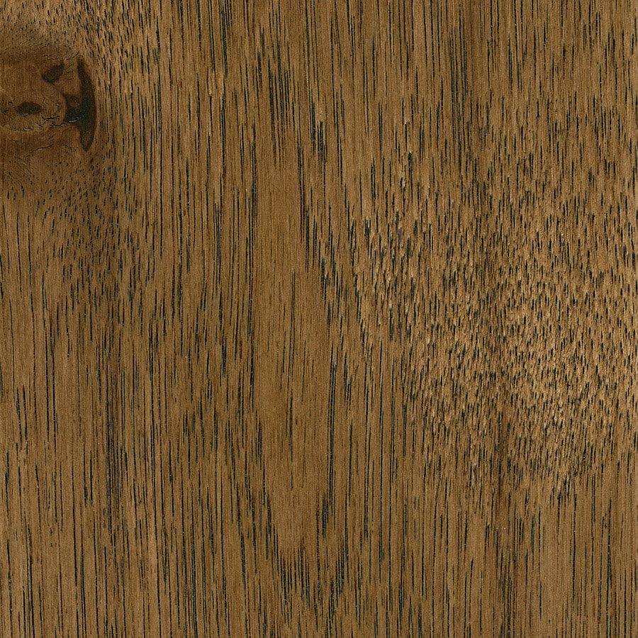 Style Selections Hickory Hardwood Flooring Sample (Brown)