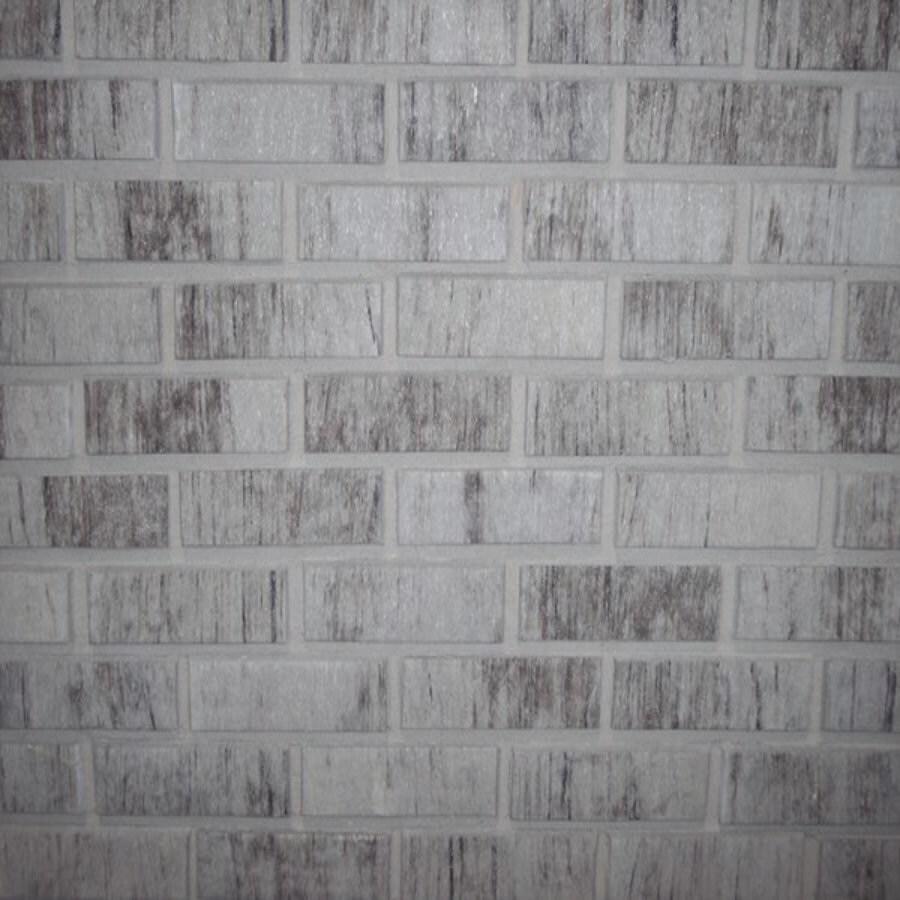 Shop Z Brick 2 3 In X 8 In Americana Liberty Gray