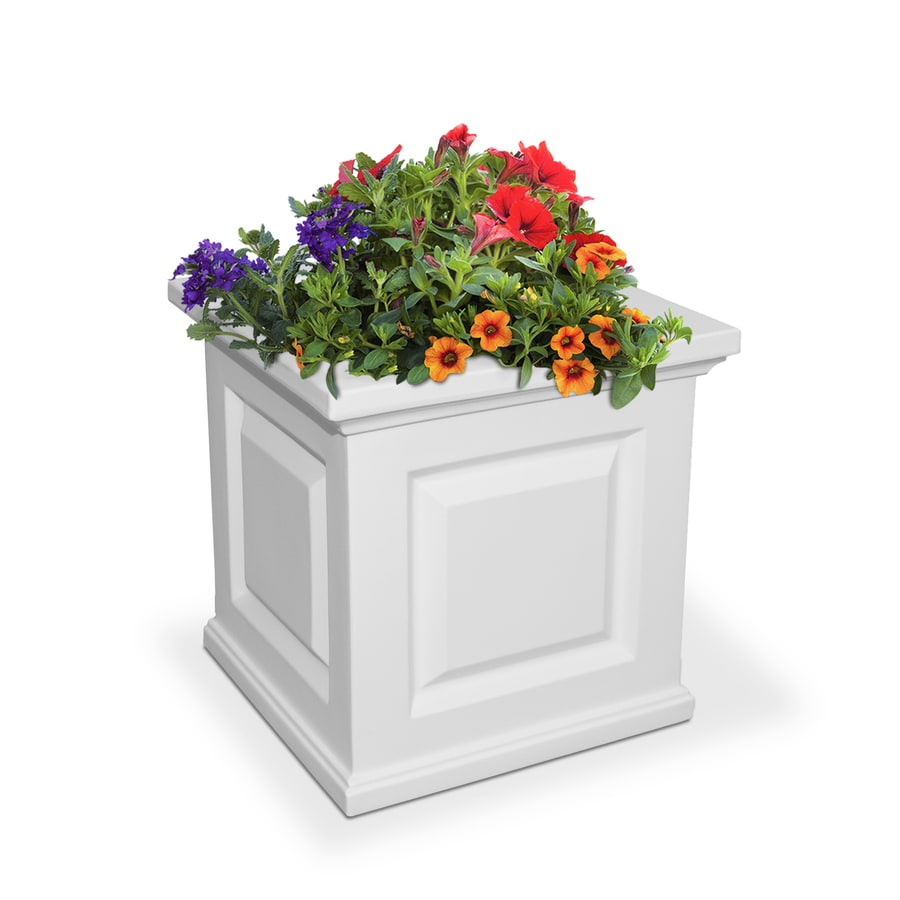 Mayne 16-in x 16-in White Resin Self Watering Square Planter