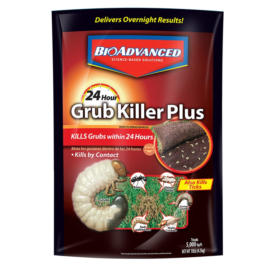 BAYER ADVANCED 10-lb Bayer 24-Hour Grub Killer