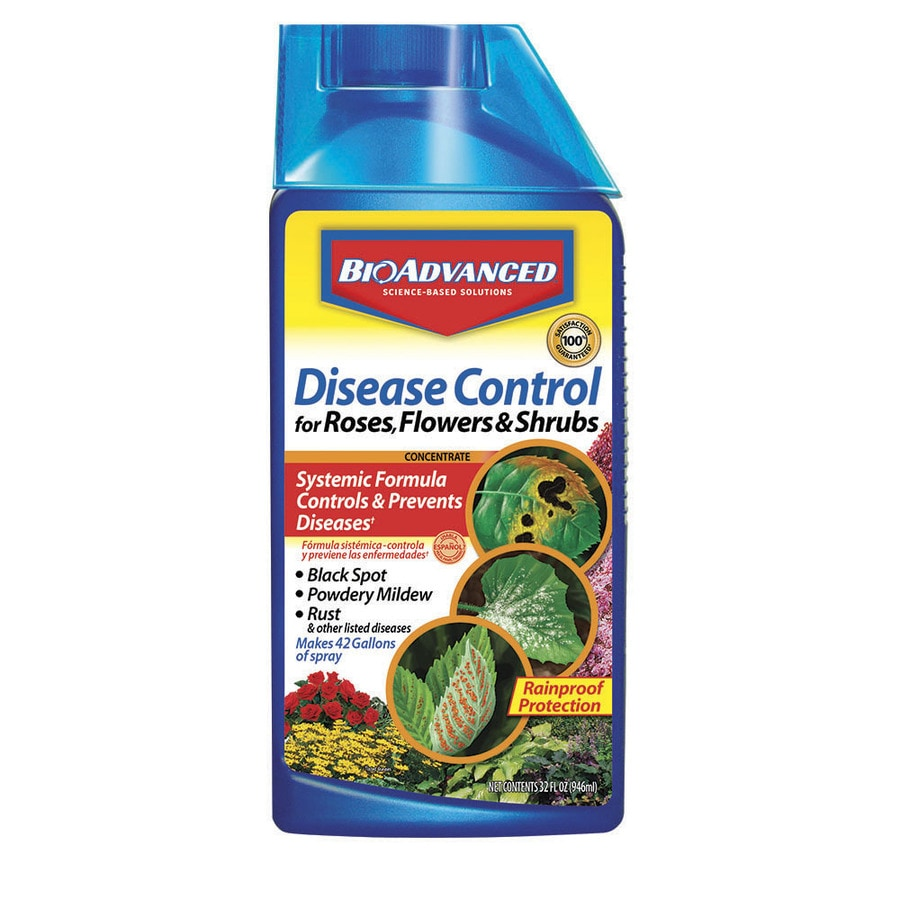BAYER ADVANCED Rose and Flower Disease Control Liquid