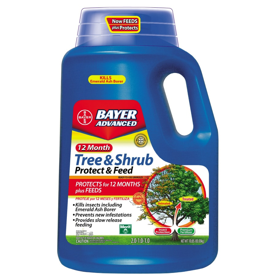 BAYER ADVANCED Tree and Shrub Protect and Feed
