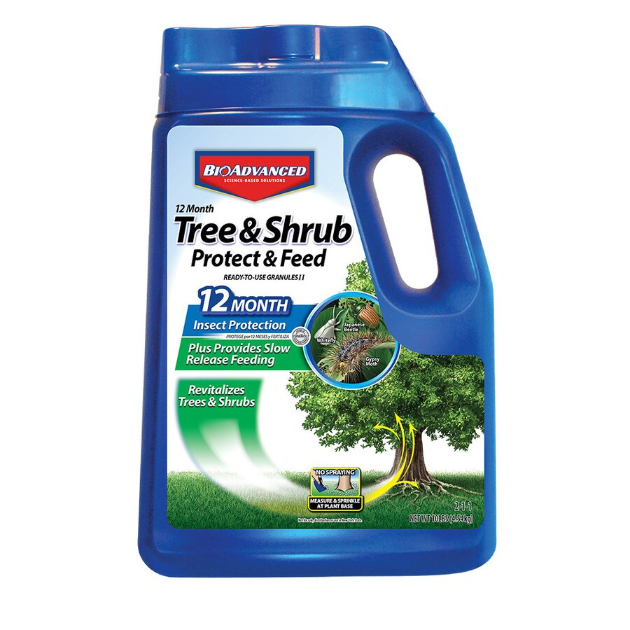 BAYER ADVANCED Tree/Shrub Protect and Feed Granules