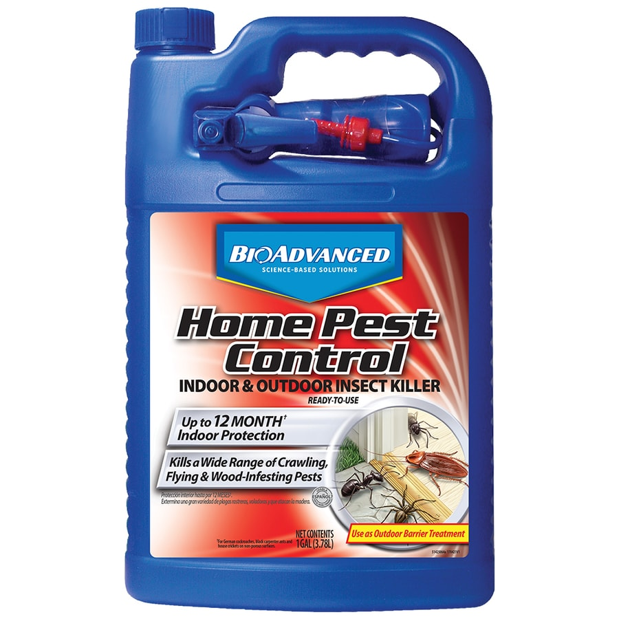 BAYER ADVANCED Home Pest Control Indoor and Outdoor Insect Killer Ready-to-Use