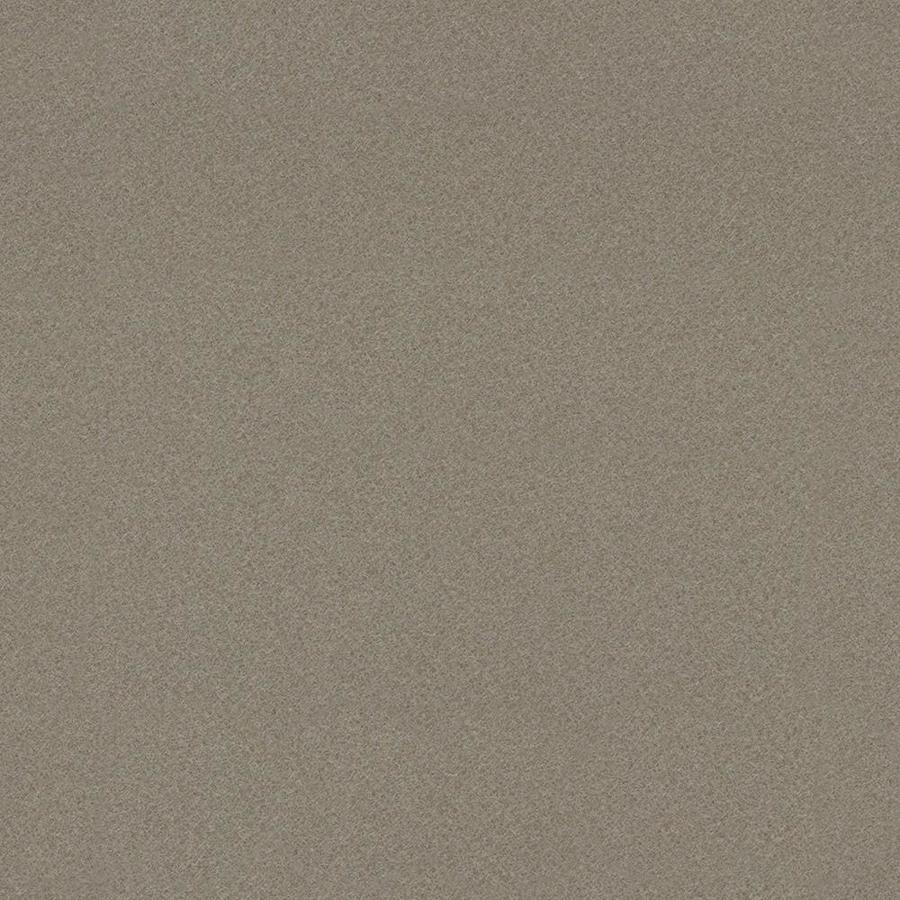 Wilsonart 48-in x 120-in Nickel EV Laminate Kitchen Countertop Sheet