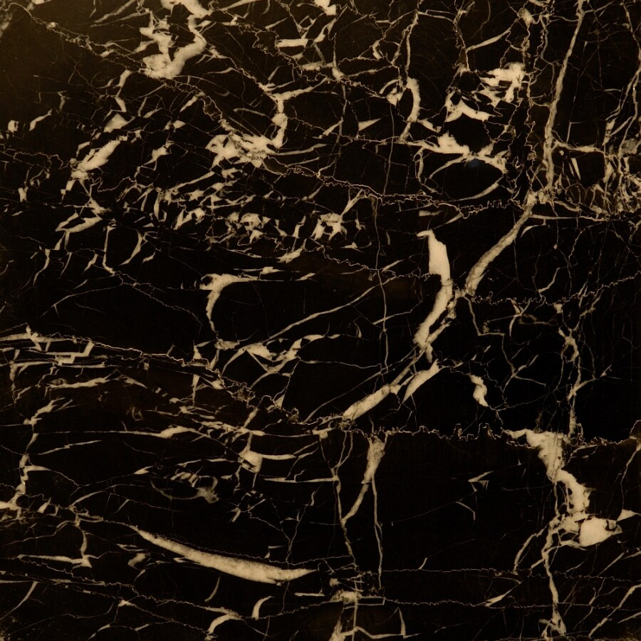 Shop Bedrosians 12 In X 12 In Black Marble Floor Tile At
