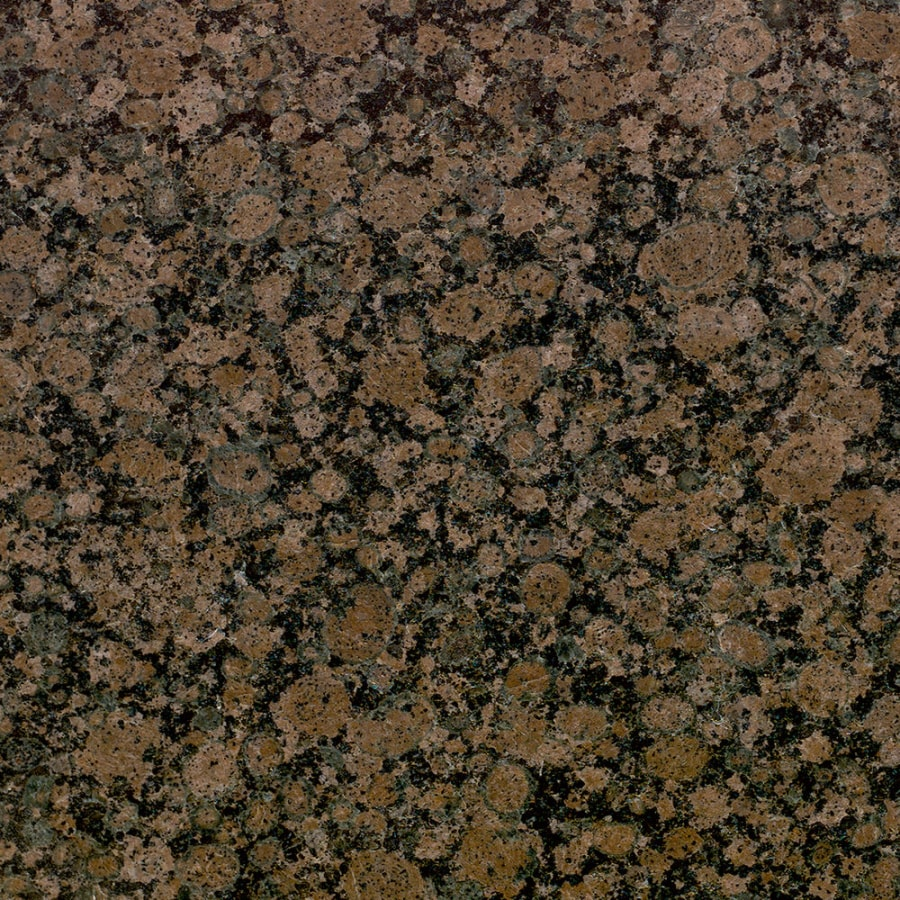 Bedrosians 12-in x 12-in Brown Granite Floor Tile