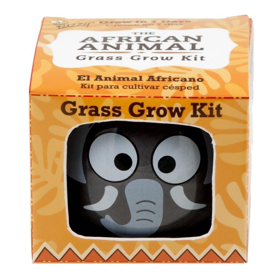 Buzzy Grass Gardening Kit