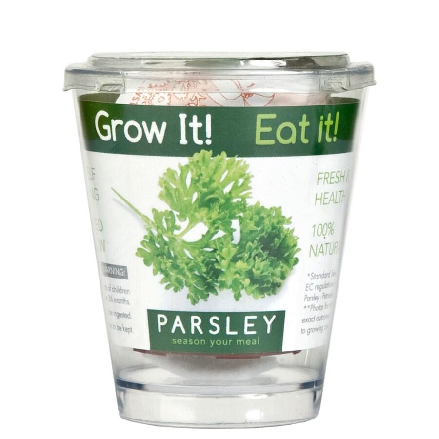 Buzzy Herb Gardening Kit