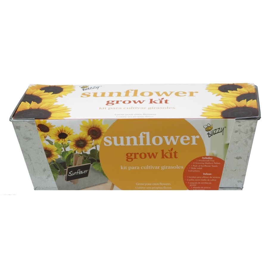 Buzzy Flower Gardening Kit